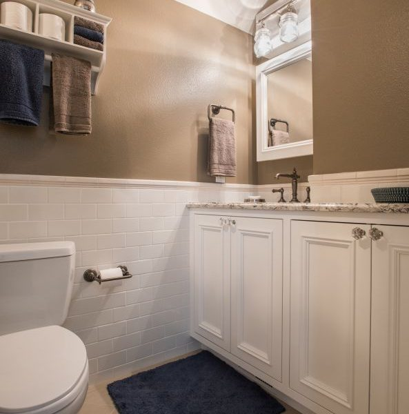Guest Bath Remodel - Greenwood Village